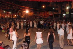Festes d\'Estiu 2011 Mercadillo, Festa infantil i desfilada canina i Cuontry