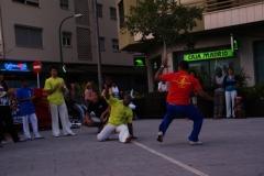 Exhibició de Capoeira 2010