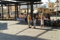Festes d'estiu 2014-mercadet solidari, mascatos, tallers i country